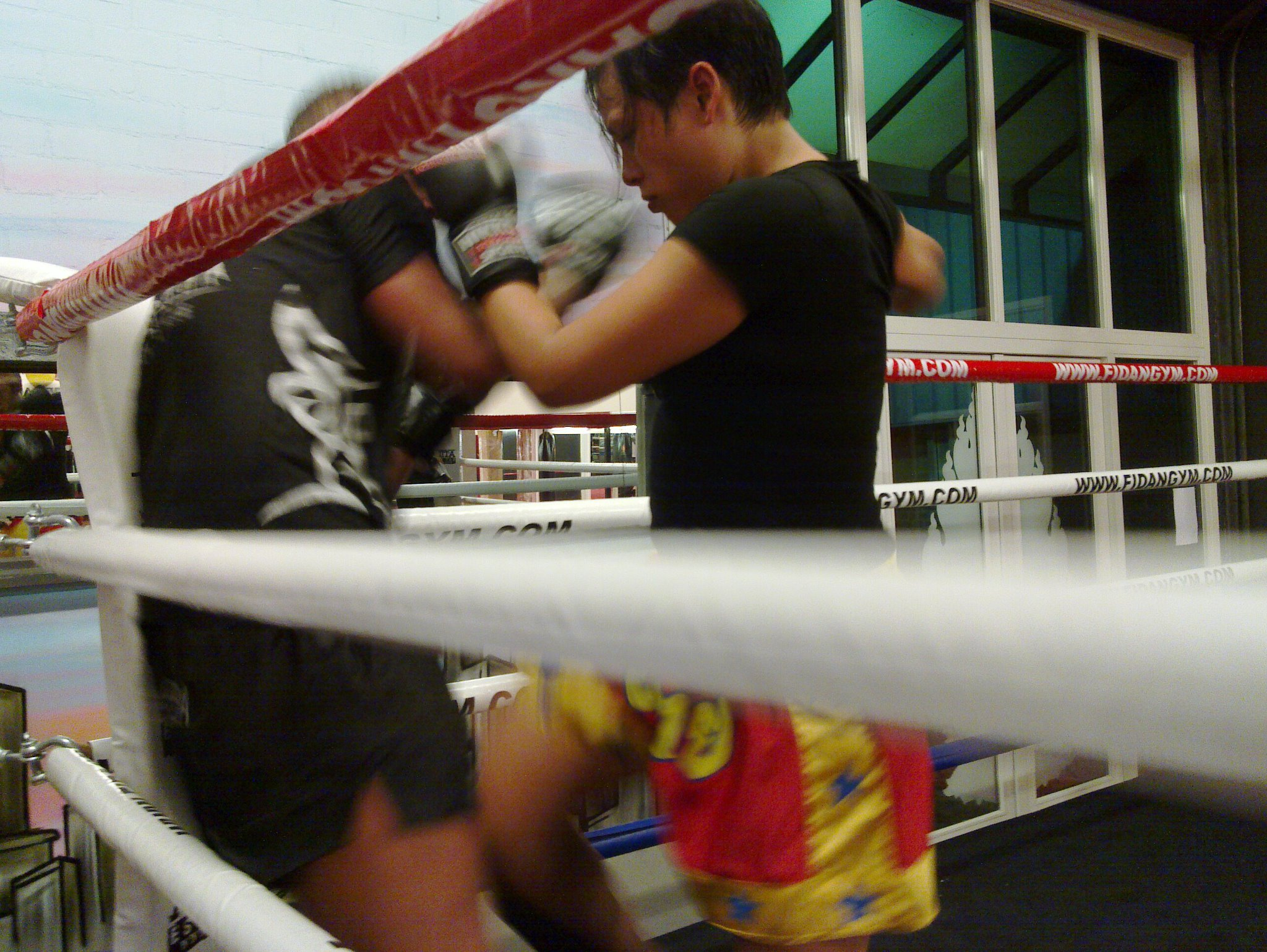 Kickbokstraining thaiboksen muay thai rosmalen kickboksen
